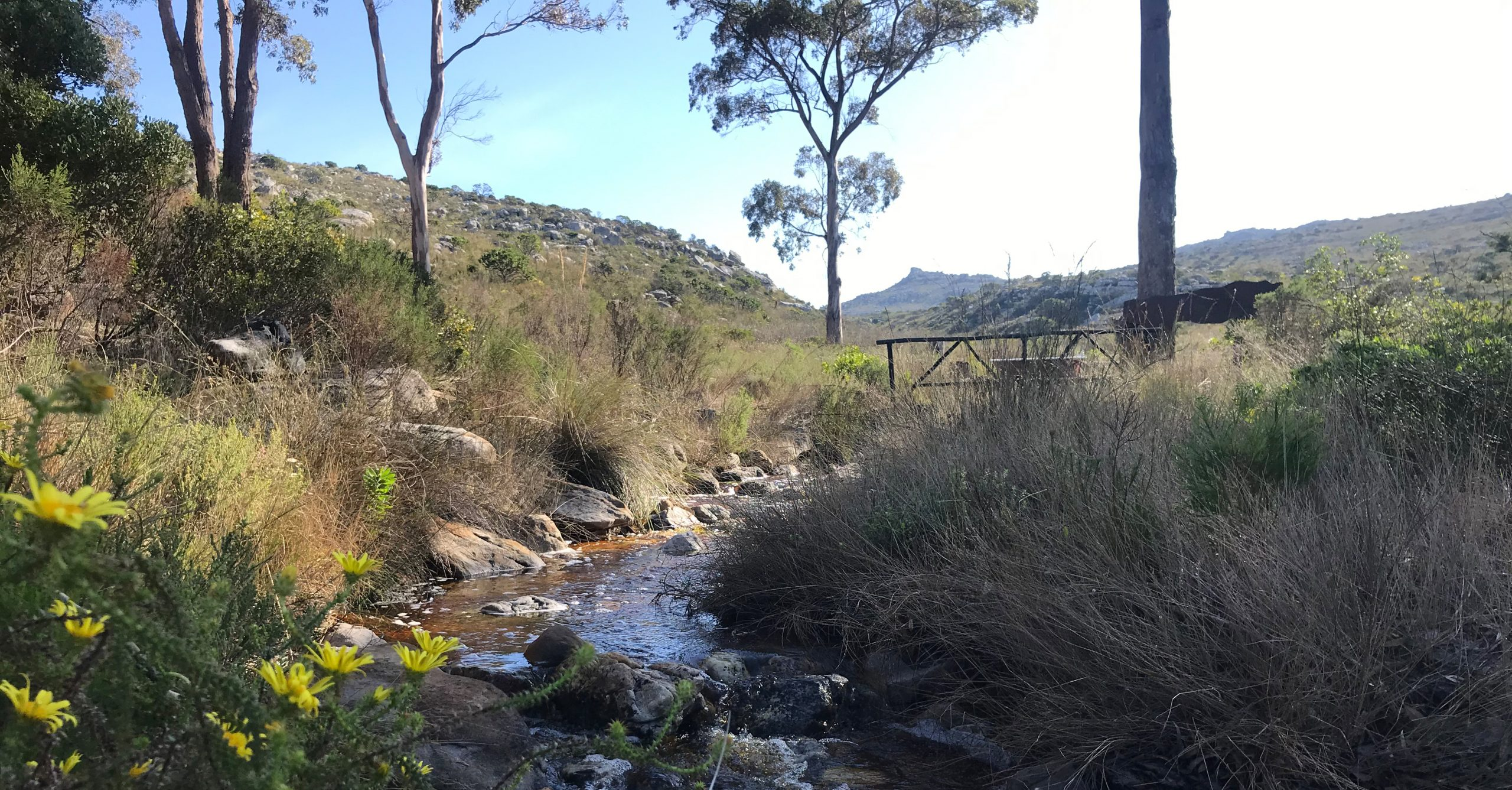 Baskloof Fynbos Reserve